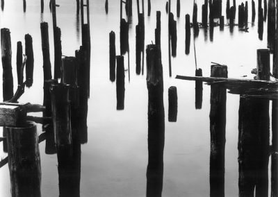 Pilings, Siuslaw River, 1969