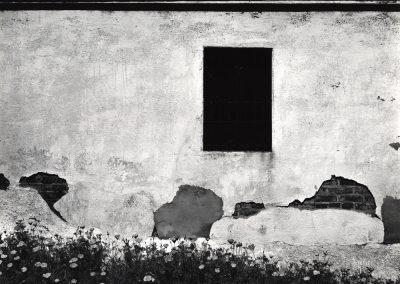 Black Window, 1950