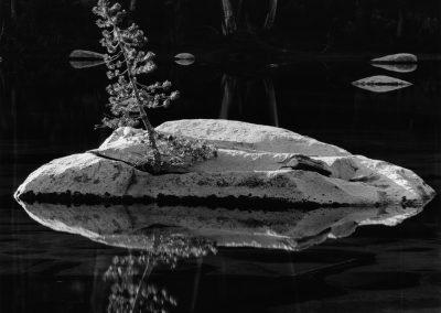 Sierra Lake, 1971