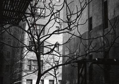 Manhattan Courtyard, 1945