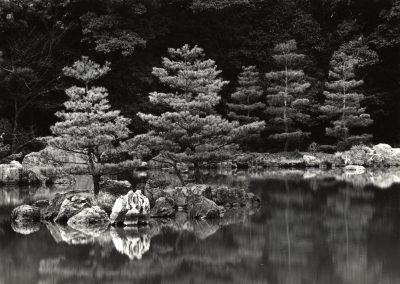Pond, 1970