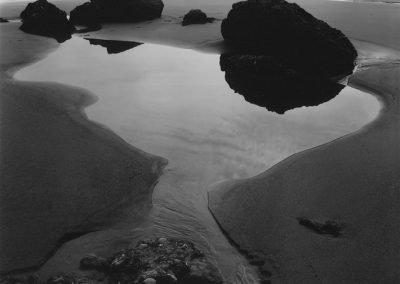 Tidal Pool, 1961